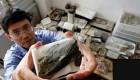 قدیمی ترین موجود روی کره زمین (عکس)