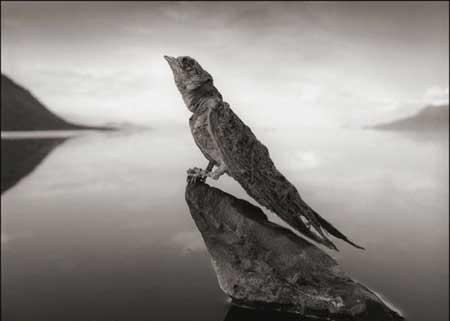 دریاچه مرگ بار و ترسناک (عکس)