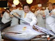 قیمت فضایی و باورنکردنی ماهی تن (عکس)