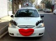 ماشین عروس جنجالی و متفاوت در تهران (عکس)