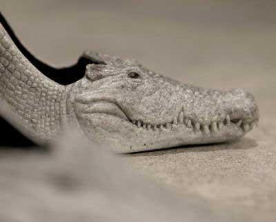 وحشتناک ترین نوع طراحی در کفش (عکس)