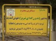 شهر عجیبی در ایران که گدا ندارد (عکس)