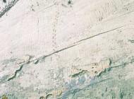 رد پاهای عجیب  دایناسورها بر روی دیوار (عکس)