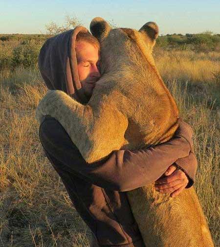 شیری که عاشق بغل کردن دو نفر است (عکس)