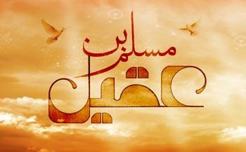 شرح زندگی نامه مسلم بن عقیل (ع)