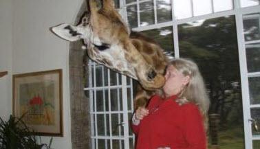 عکس های خنده دار از شوخی حیوانات با انسان ها