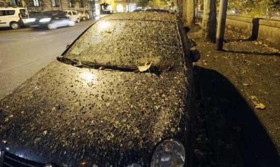باران مدفوع در پایتخت ایتالیا (عکس)