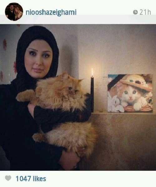نیوشا ضیغمی در سوگ گربه اش + عکس