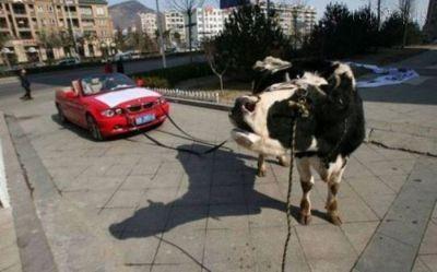 عکس های خنده دار از کارهای جالب و عجیب