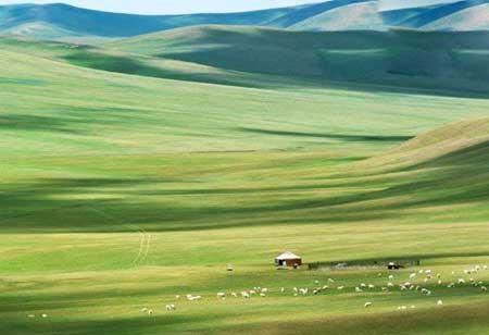 زیباترین جاذبه های گردشگری در کشور چین (عکس)