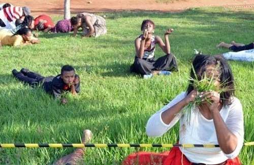 با خوردن چمن می توانید به خدا نزدیکتر شوید! +عکس