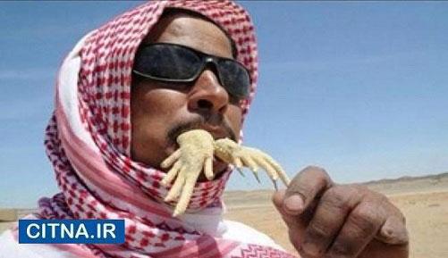 تصاویری از مردی که مارمولک می خورد