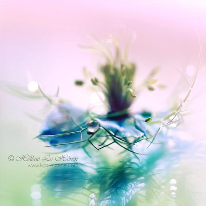 عکس های احساسی و بسیار زیبا..!