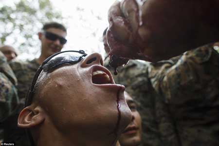 تمرین های سخت نظامی برای زنده ماندن در جنگل (عکس)