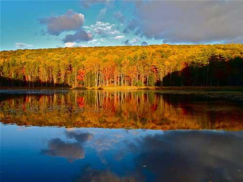عکس دیدنی از طبیعت فصل پاییز!!