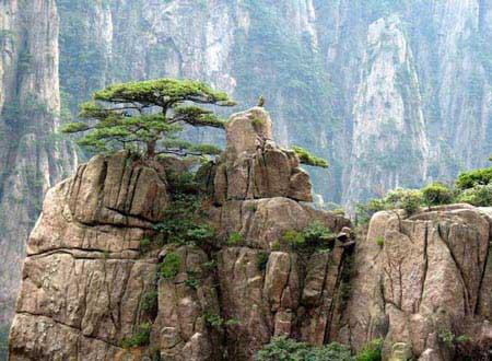 عکسهایی از کوهی زیبا و رویایی هونگ شان در شرق چین