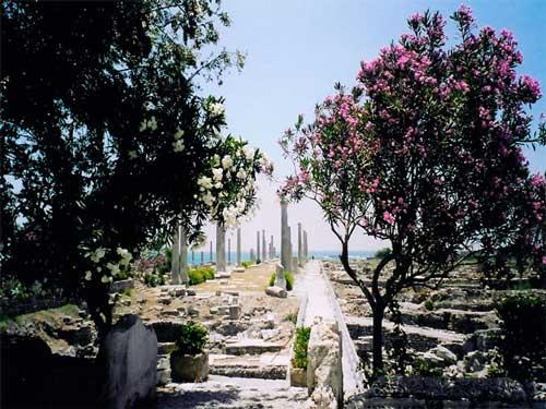 جاذبه های گردشگری کشور لبنان