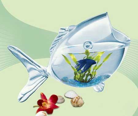 مدل تنگ ماهی - برای عید نوروز