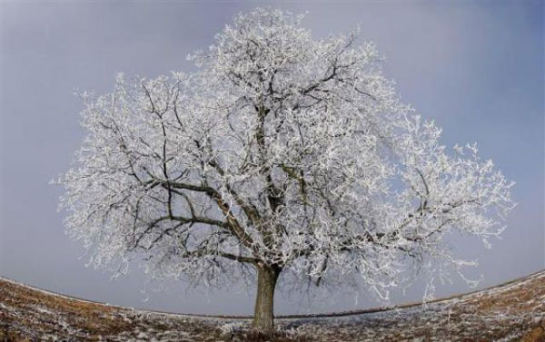 عکس های زیبا از مناظر برف و یخ در طبیعت