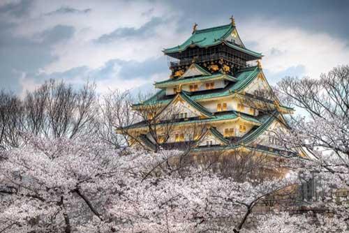 عکسهای زیبا از شگفتی های بهار در ژاپن