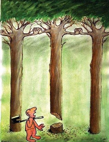 عکس کاریکاتورهای خنده دار ویژه روز درختکاری
