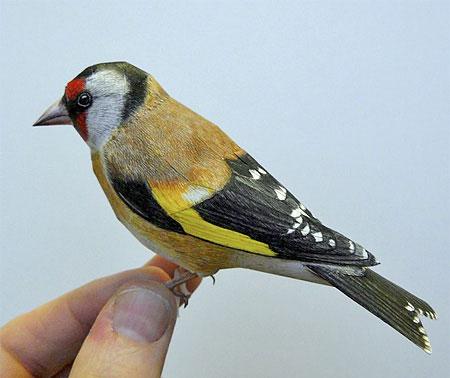 عکس های پرنده هایی که از کاغذ درست شده اند