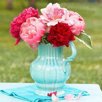 نتیجه تصویری برای گل های زیبا نسیم معرفت