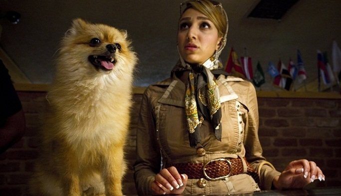 خداحافظی پولدارهای ایران با سگهای محبوبشان.. (تصاویر)