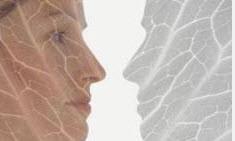 استریا یاخطوط پوستی چیست و راه درمانش چگونه است؟