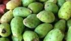 میوه كاكتوس چه فوایدی دارد