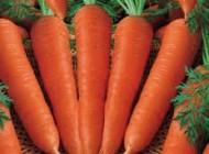 مفید بودن هویج برای پوست