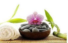 فواید درمانی بامبو