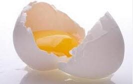 تخم مرغ و خواص آن