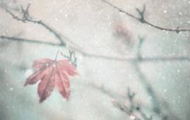مریضی های روحی در زمستان