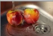 همیشه قانون شستشوی میوهها را در منزلتان رعایت کنید