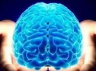 موفقیت خوشحال کننده در  روشی برای درمان سرطان مغز