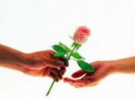 ارتباط عاشقانه و روابط صمیمی بین زوجها