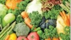 گیاهخواری مطلق نیز با نیاز بدن انسان تطبیق پیدا نمیکند