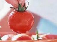 نحوه نگهداری سبزیجات درمقابل حفظ مواد معدنی اش