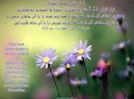 25 حدیث درمذمت دروغ ازفرمایشات پیامبر(ص)