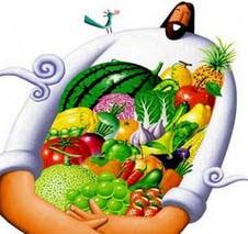 حکایت زیبای میوه ها را لقمان خورده است