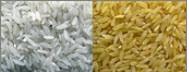 آیا مصرف برنج، افراد را مستعد ابتلا به سرطان میکند؟