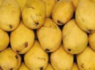 میوه استوایی لاغر کننده