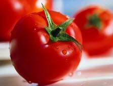 خواص شگفت انگیز و رژیمی گوجه فرنگی