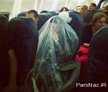 رفتار عجیب یک یهودی افراطی در هواپیما (عکس)