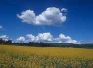 آیا ابرها هم سقوط میکنند؟