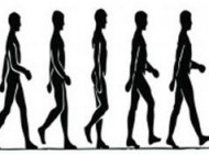 علت هماهنگ شدن اهنگ دست و پا هنگام راه رفتن