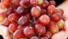 هسته انگور را با خود انگور بخورید