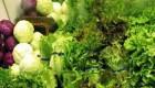 درباره غذاهای ارگانیک چیزی شنیده اید؟