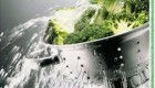 سبزیجات را با موادشوینده یا بدون آن بشوییم؟